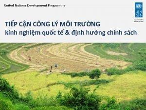 United Nations Development Programme TIP CN CNG L