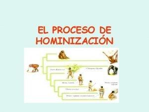 EL PROCESO DE HOMINIZACIN EVOLUCIN HUMANA La evolucin
