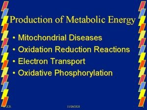 Production of Metabolic Energy Mitochondrial Diseases Oxidation Reduction