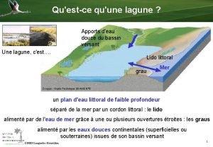 Questce quune lagune Apports deau douce du bassin
