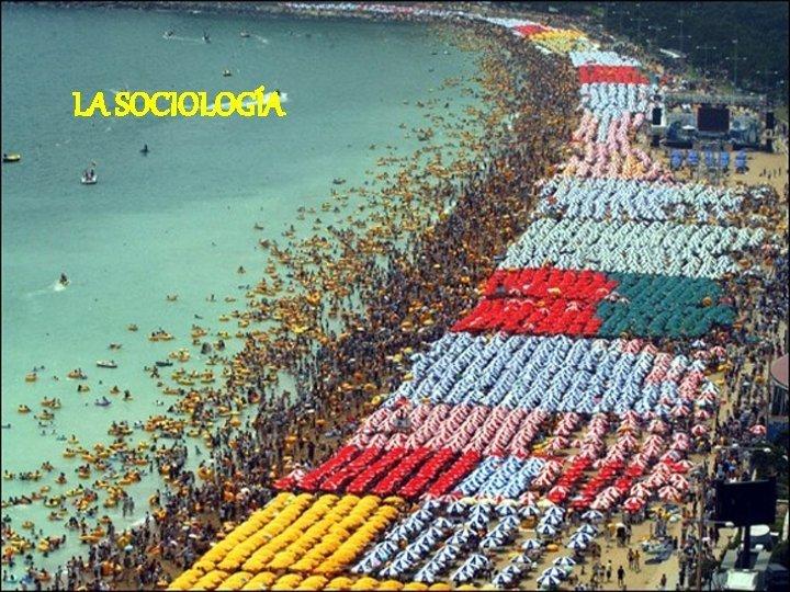 LA SOCIOLOGA NDICE 1 Sociologa 2 2 Consecuencias