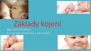 Zklady kojen Mgr Sylva mdov Pro porodn asistentky