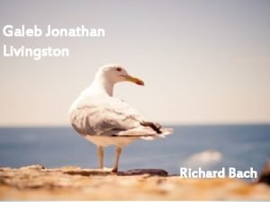 Galeb Jonathan Livingston Richard Bach Richard Bach David
