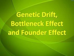 Genetic Drift Bottleneck Effect and Founder Effect Genetic
