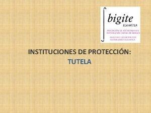 INSTITUCIONES DE PROTECCIN TUTELA TUTELA Y OTRAS INSTITUCIONES