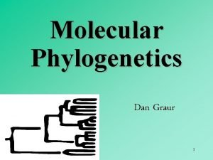 Molecular Phylogenetics Dan Graur 1 Objectives of molecular