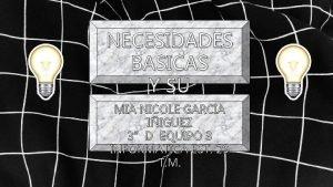 NECESIDADES BASICAS Y SU MIA NICOLE GARCIA SATISFACCION