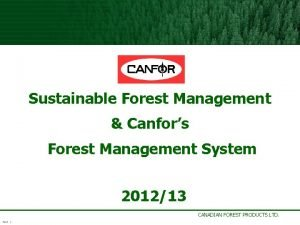 Sustainable Forest Management Canfors Forest Management System 201213