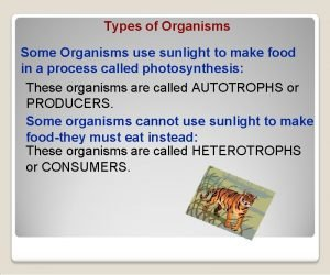 Types of Organisms Some Organisms use sunlight to