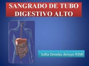 SANGRADO DE TUBO DIGESTIVO ALTO Sofia Ornelas Arroyo