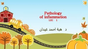 Pathology of inflammation LEC 1 Overview of Inflammation