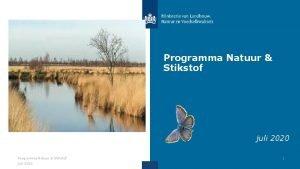 Programma Natuur Stikstof juli 2020 1 Doelen en
