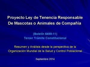Proyecto Ley de Tenencia Responsable De Mascotas o