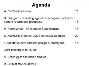 Agenda A Caldwell overview 15 S Belogurov Shielding