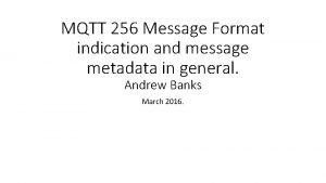MQTT 256 Message Format indication and message metadata