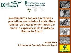Investimentos sociais em cadeias produtivas associadas agricultura familiar