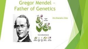 Gregor Mendel Father of Genetics Mini Biography Video