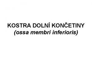 KOSTRA DOLN KONETINY ossa membri inferioris KOSTRA DOLN