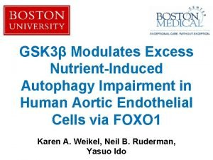 GSK 3 Modulates Excess NutrientInduced Autophagy Impairment in