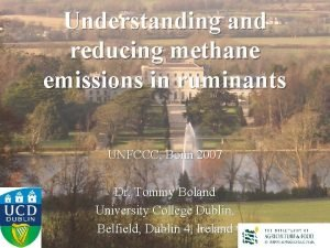 Understanding and reducing methane emissions in ruminants UNFCCC