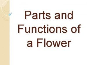 Parts and Functions of a Flower Male Parts