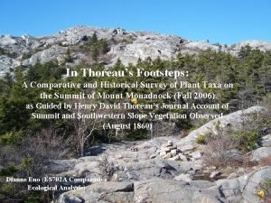 In Thoreaus Footsteps A Comparative and Historical Survey