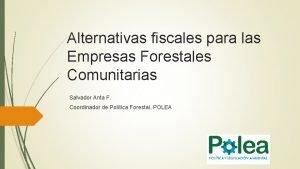 Alternativas fiscales para las Empresas Forestales Comunitarias Salvador