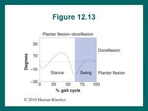 Figure 12 13 Figure 12 14 Figure 12