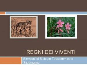 I REGNI DEI VIVENTI Elementi di Biologia Tassonomica