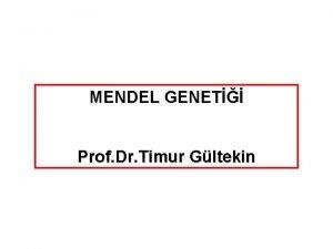 MENDEL GENET Prof Dr Timur Gltekin GREGOR MENDEL