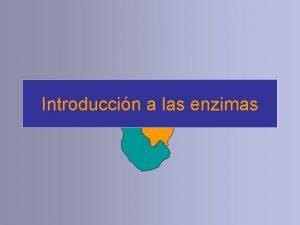 Introduccin a las enzimas Primera parte Introduccin Qu