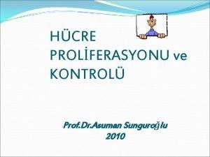 HCRE PROLFERASYONU ve KONTROL Prof Dr Asuman Sungurolu