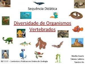 Sequncia Didtica Diversidade de Organismos Vertebrados BIZ 0307
