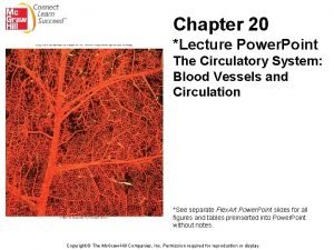 Chapter 20 Lecture Power Point The Circulatory System