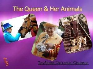Elizabeth II is fond of animals Elizabeth II