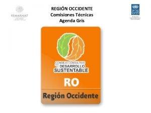 REGIN OCCIDENTE Comisiones Tcnicas Agenda Gris REGIN OCCIDENTE