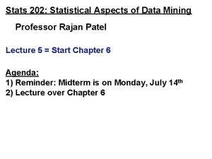 Stats 202 Statistical Aspects of Data Mining Professor