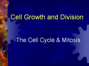 Cell Growth and Division The Cell Cycle Mitosis