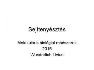 Sejttenyszts Molekulris biolgiai mdszerek 2015 Wunderlich Lvius Baktriumok