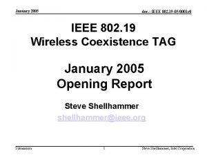 January 2005 doc IEEE 802 19 050001 r
