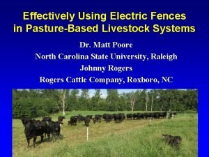 Effectively Using Electric Fences in PastureBased Livestock Systems