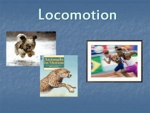 Locomotion Locomotion n The act or power of