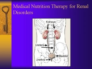 Medical Nutrition Therapy for Renal Disorders Functions of