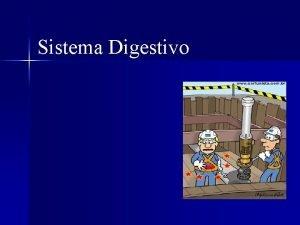 Sistema Digestivo Organizao do Sistema Digestrio Fisiologia da