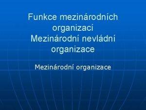 Funkce mezinrodnch organizac Mezinrodn nevldn organizace Mezinrodn organizace