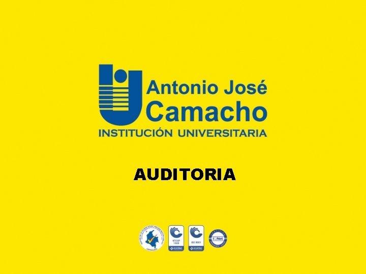 AUDITORIA Auditoria Interna LAS NORMAS DE AUDITORIA INTERNA