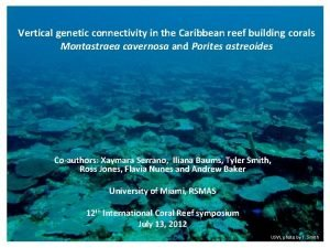 Vertical genetic connectivity in the Caribbean reef building