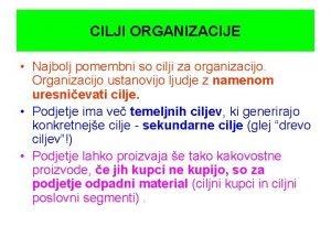 CILJI ORGANIZACIJE Najbolj pomembni so cilji za organizacijo