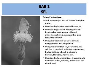 BAB 1 SEL Tujuan Pembelajaran Setelah mempelajari bab