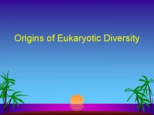 Origins of Eukaryotic Diversity Eukaryotic Tree Characteristics l